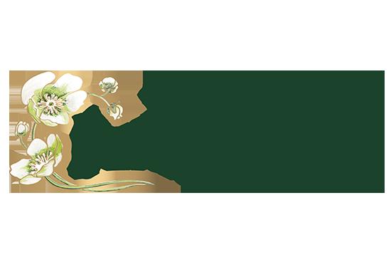 Champagne Perrier Jouet sérigraphie bouteille verre alcool apéritif SAGA Décor